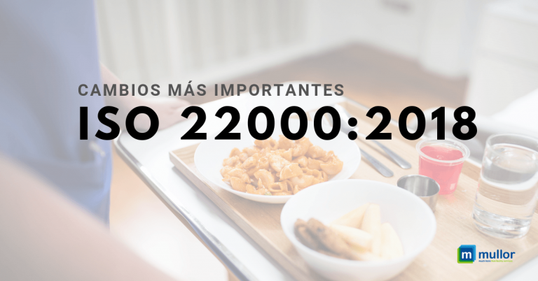 ISO-22000-2018-cambios-1-768x402