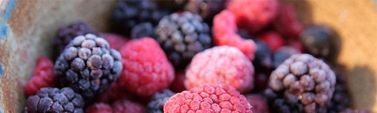 Fruta y vegetales congelados.